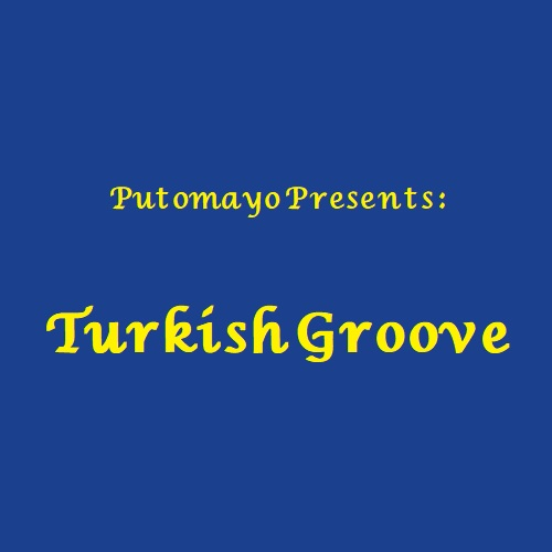 آلبوم Turkish Groove اثر Various Artists