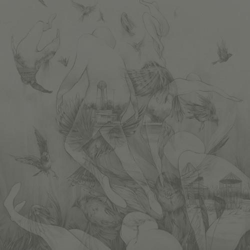 آلبوم The Last Dawn اثر MONO