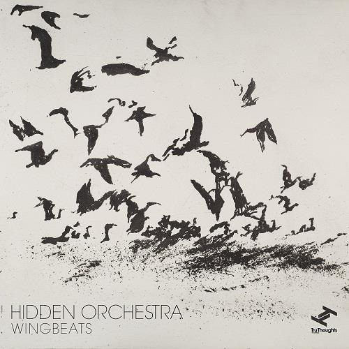دانلود آلبوم موسیقی Hidden-Orchestra-Wingbeats