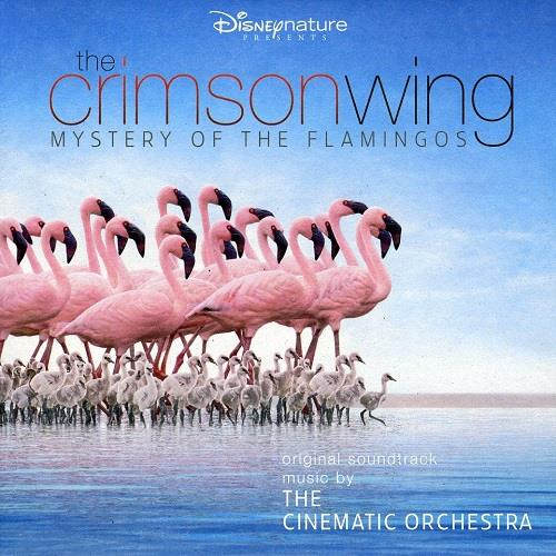آلبوم The Crimson Wing: Mystery of the Flamingos اثر The Cinematic Orchestra