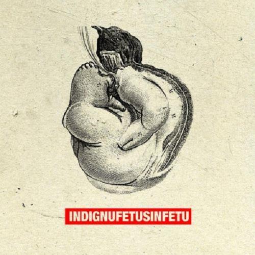 آلبوم Fetus In Fetu اثر Indignu
