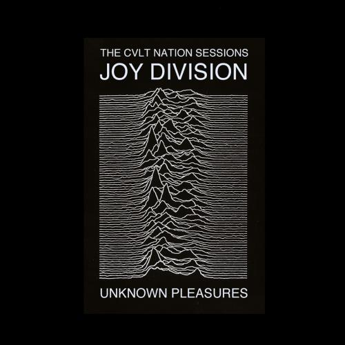 آلبوم Unknown Pleasures اثر Joy Division