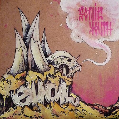 آلبوم Evol اثر Sonic Youth