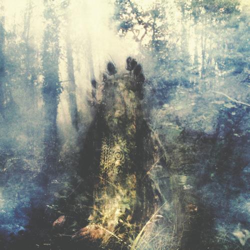 آلبوم Wistful اثر Sylvaine