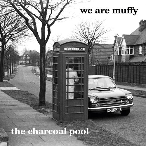 آلبوم The Charcoal Pool اثر We Are Muffy