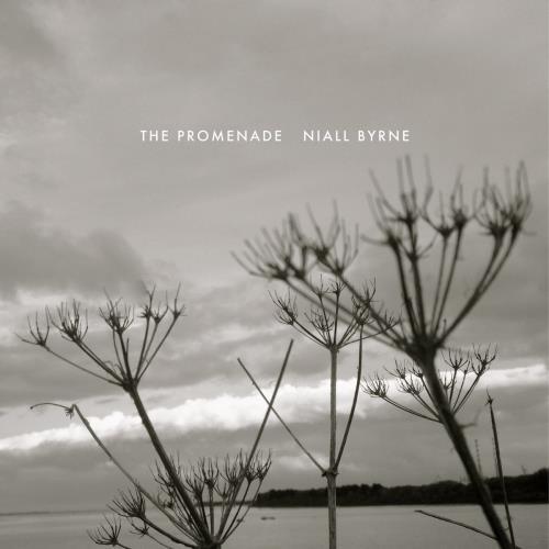 دانلود آلبوم موسیقی Niall-Byrne-The-Promenade