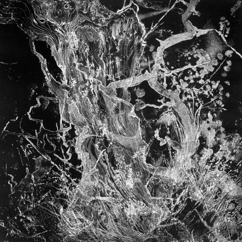 دانلود آلبوم Monolith اثر BRUIT ≤
