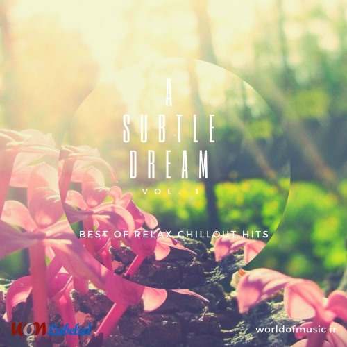 آلبوم A Subtle Dream - Relax Chillout Mix, Vol. 1 اثر Various Artists