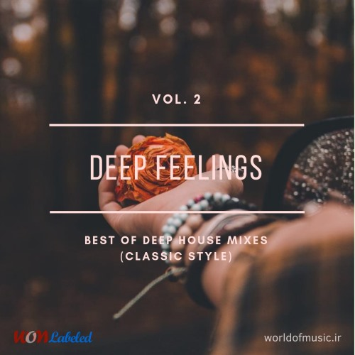 دانلود آلبوم موسیقی Deep Feelings - Deep House Mix (Classic Style), Vol. 2