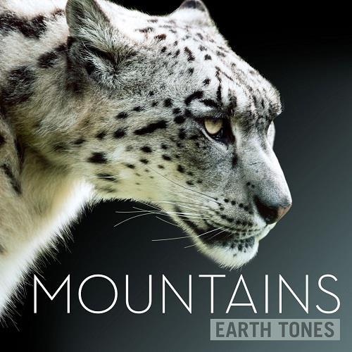 دانلود آلبوم موسیقی earth-tones-mountains