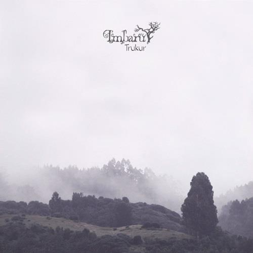 دانلود آلبوم Trukur اثر Imbaru