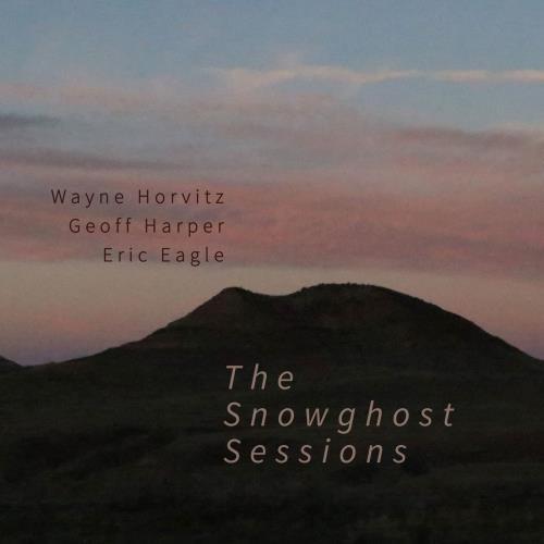 دانلود آلبوم موسیقی wayne-horvitz-the-snowghost-sessions