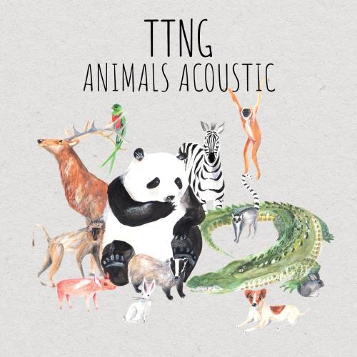 آلبوم Animals Acoustic اثر TTNG