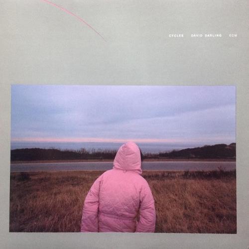 دانلود آلبوم موسیقی david-darling-cycles