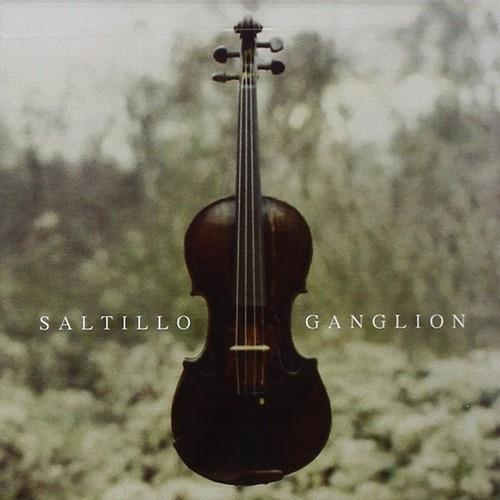 دانلود آلبوم Ganglion اثر Saltillo