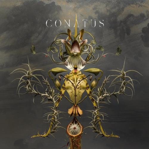 دانلود آلبوم موسیقی Joep-Beving-Conatus