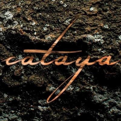 دانلود آلبوم موسیقی cataya-sukzession