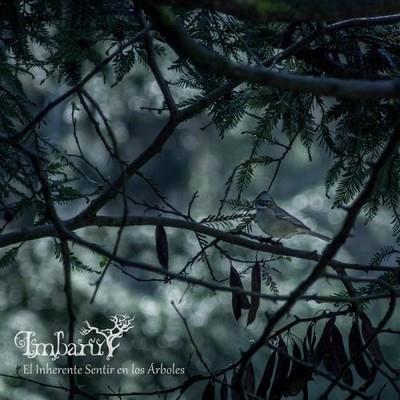 دانلود آلبوم موسیقی imbaru-el-inherente-sentir-en-los-arboles