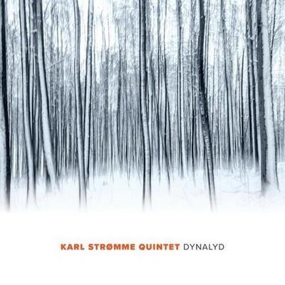 دانلود آلبوم موسیقی Dynalyd