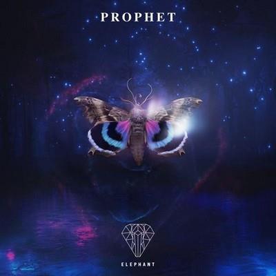 دانلود آلبوم موسیقی Elephant-Music-Prophet
