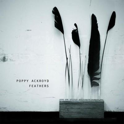 دانلود آلبوم موسیقی Poppy-Ackroyd-Feathers