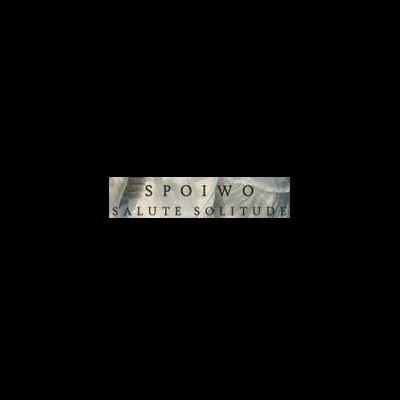 دانلود آلبوم Salute Solitude اثر SPOIWO