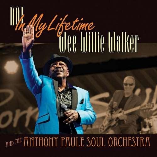 دانلود آلبوم Not in My Lifetime اثر Wee Willie Walker