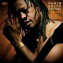 دانلود آلبوم موسیقی Afriki