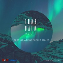 آلبوم Dumb Calm - Atmospheric Mix, Vol. 1 اثر Various Artists