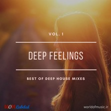 آلبوم Deep Feelings - Deep House Mix, Vol. 1 اثر Various Artists