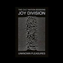 آلبوم Unknown Pleasures اثر Joy Division