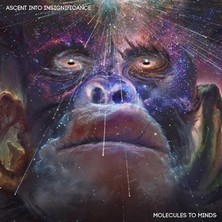 دانلود آلبوم موسیقی Ascent Into Insignificance
