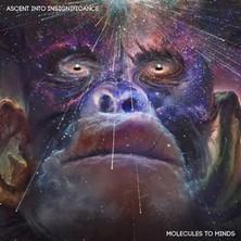 دانلود آلبوم موسیقی molecules-to-minds-ascent-into-insignificance