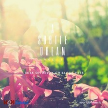 آلبوم A Subtle Dream - Relax Chillout Mix, Vol. 1 اثر Various Artists