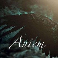 آلبوم Aniem اثر Paul Sills