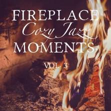آلبوم Fireplace Cozy Jazz Moments, Vol. 3 اثر Various Artists
