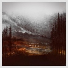 دانلود آلبوم موسیقی V A L E