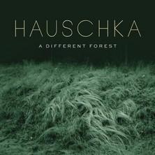 آلبوم A Different Forest اثر Hauschka