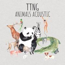 دانلود آلبوم موسیقی TTNG-Animals-Acoustic