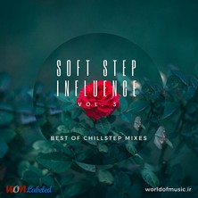 آلبوم Soft Step Influence - Chillstep Mix, Vol. 3 اثر Various Artists