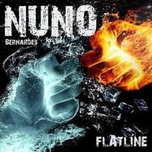 دانلود آلبوم موسیقی Flatline