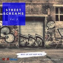 دانلود آلبوم موسیقی wom-street-screams-hip-hop-hits-vol-2