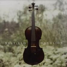 دانلود آلبوم موسیقی Ganglion