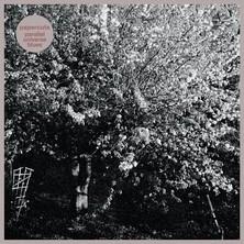 آلبوم Parallel Universe Blues اثر Papercuts