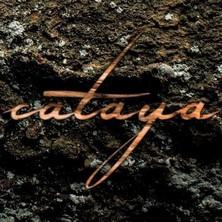 آلبوم Sukzession اثر Cataya