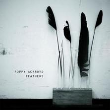 دانلود آلبوم موسیقی Feathers