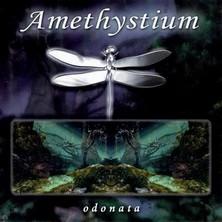آلبوم Odonata اثر Amethystium