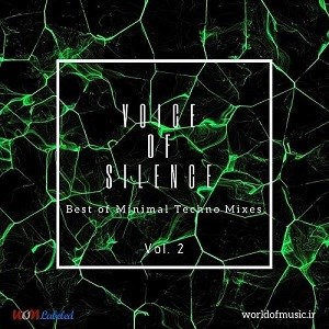 آلبوم Voice of Silence - Minimal Techno Mix, Vol. 2 اثر Various Artists