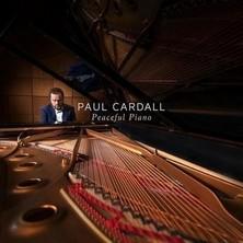 دانلود آلبوم موسیقی Peaceful Piano