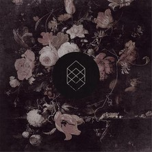 دانلود آلبوم موسیقی Monochrome Noise Love